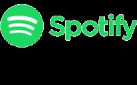 Volker Rosin auf Spotify